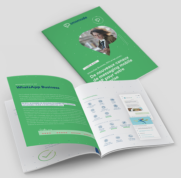 mobile messaging white paper: RCS, WhatsApp Business and others